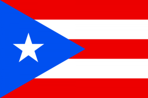 Puerto Rico Auto Transport Services